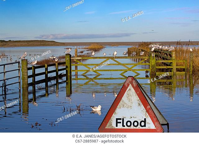 Salthouse Coast road and marshes flooded after tidal surge North Norfolk