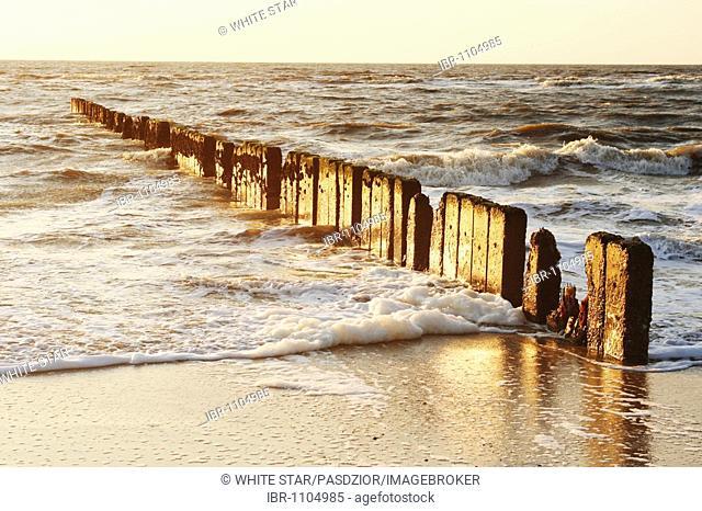 Groyne at the beach in Kampen, Sylt Island, North Sea, Schleswig-Holstein, Germany, Europe
