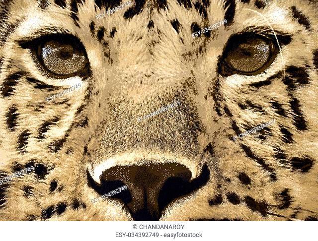 Carpet wall-hanging with Cheetah face
