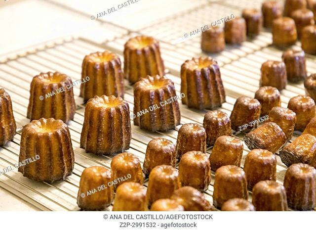 Canneles, French dessert. Pastry flavored with rum and vanilla