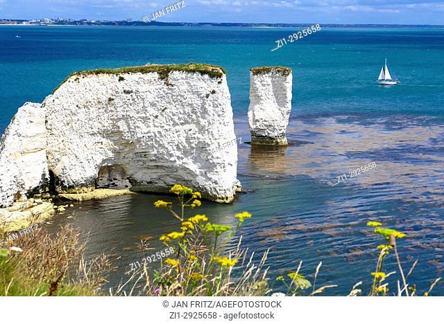 coast with Old Harry chalk cliffs at jurassic coast, Dorset, England