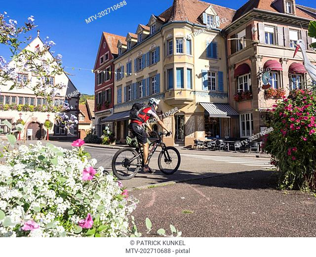 Man riding electric mountain bike through the commune of Munster, Haut-Rhin, Vosges, France