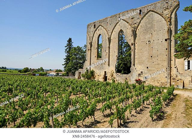 Ruins of Les Cordeliers church at Saint-Emilion, Gironde, Aquitaine, France, Europe