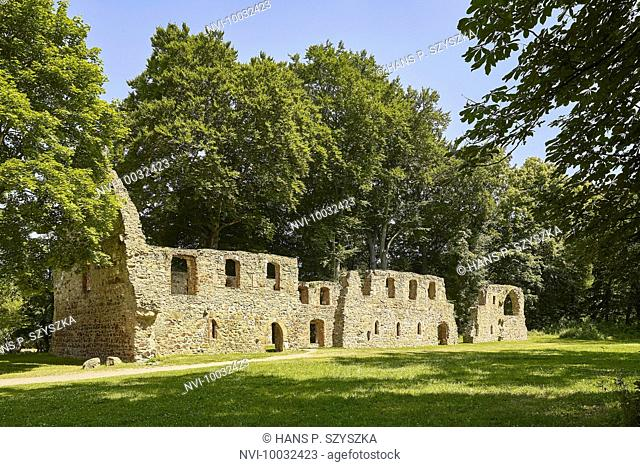 Monastery ruin Nimbschen, Saxony, Germany