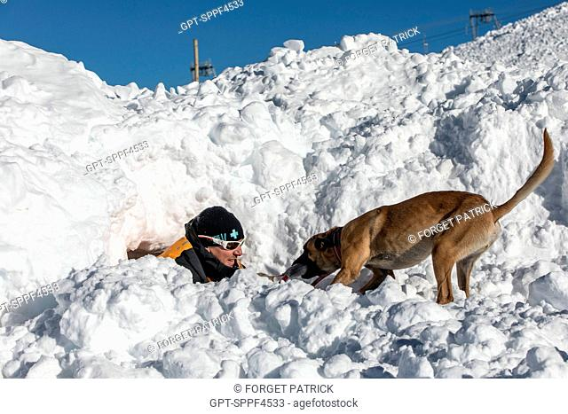 A BELGIAN MALINOIS UNCOVERING A VICTIM, REPORTING ON AVALANCHE DOG HANDLERS, TRAINING ORGANIZED BY THE ANENA WITH THE APPROVAL OF THE CIVIL SECURITY DEPARTMENT