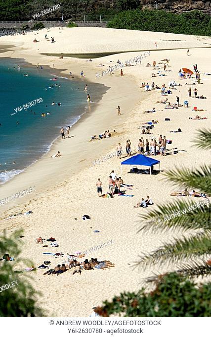 Surf beach at Waimea north shore Oahu Hawaii USA