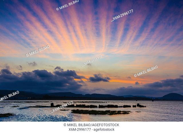 Salt marshes at sunset. Colindres. Marismas de Santoña, Victoria y Joyel Natural Park. Cantabria, Spain, Europe