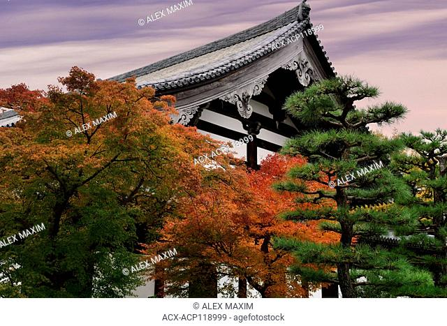 Autumn scenery of a Japanese garden in front of Tofukuji temple building. Tofuku-ji, Higashiyama-ku, Kyoto, Japan 2017