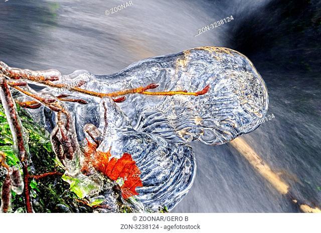 vereister Ast über dem Wasser, icy Branch above the water