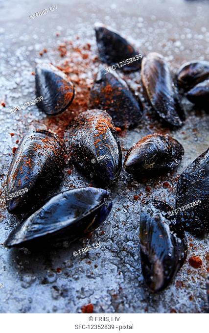 Fresh mussels with paprika powder