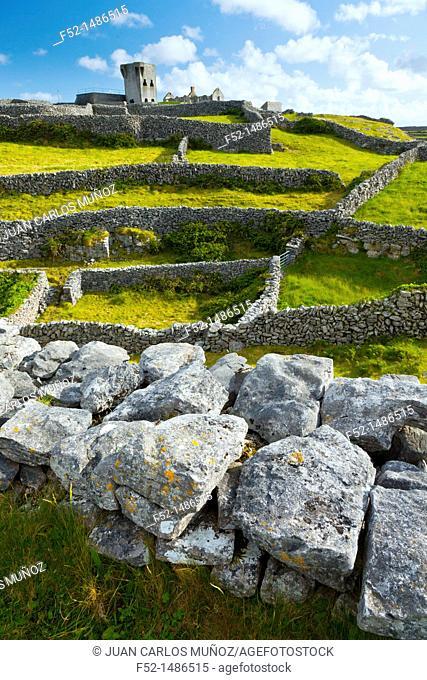 O'Brien's Castle  Inisheer Island - Inis Oirr  Aran Islands, Galway County, West Ireland, Europe
