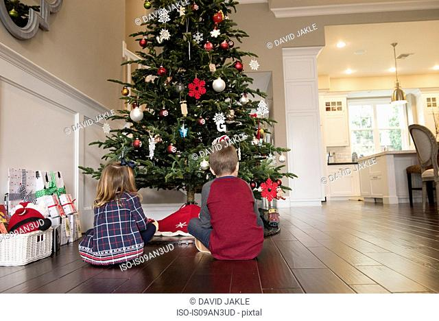 Rear view of brother and sister sitting in front of xmas tree