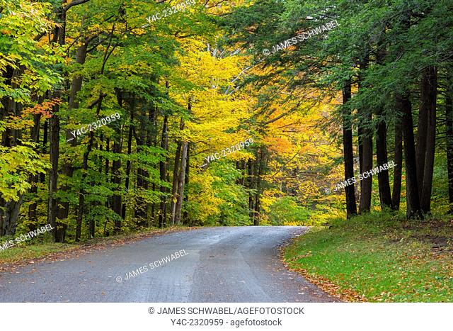 Road curving though fall colors in woods in Chestnut Ridge Park in New York State
