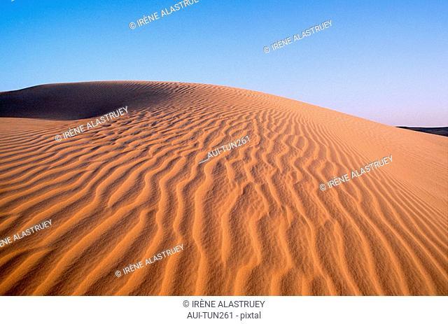 Tunisia - The South - Chott el Jerid Region - Nefta surroundings - Onk Jemel site