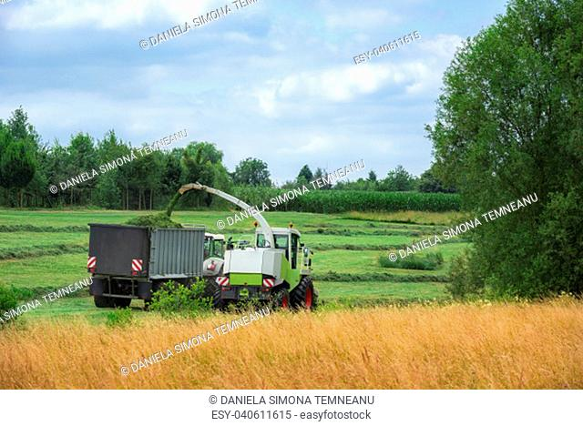 Farming activity with a self-propelled forage machinery, harvesting grass and loading a trailer, in Baden Wuerttemberg region, Germany