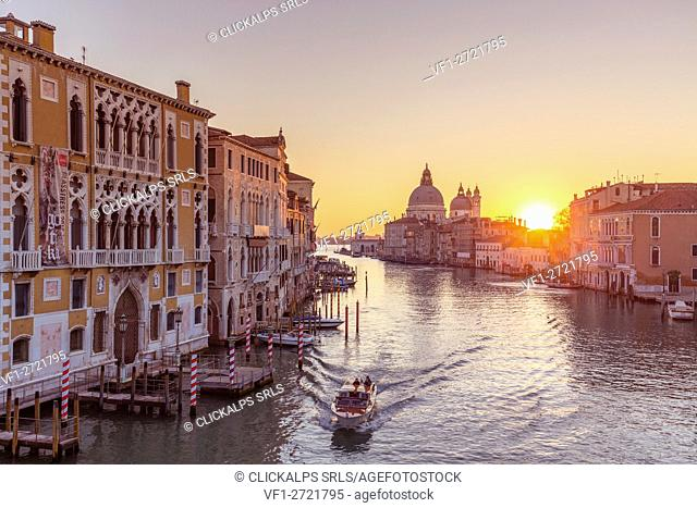 Gran Canal and Santa Maria della Salute Church at sunrise. Venice, Veneto, Italy