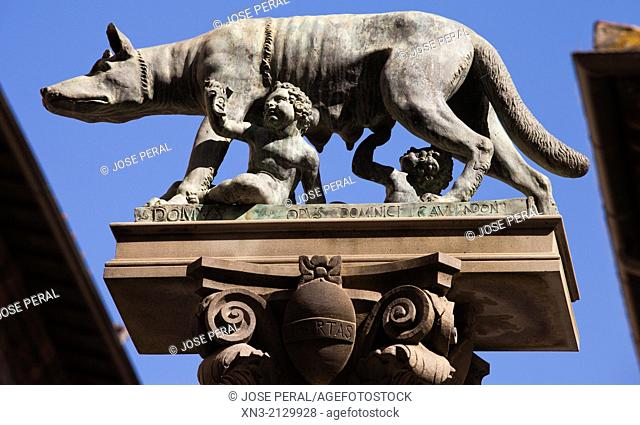 Capitolina Wolf, Romulus and Remus statue, Piazza Tolomei square, UNESCO World Heritage Site, Siena, Tuscany, Italy, Europe