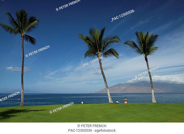 Women meditating on the grass, West Maui mountains from Wailea, coconut trees, stand up paddlers, near Kihei boat launch; Kihei, Maui, Hawaii