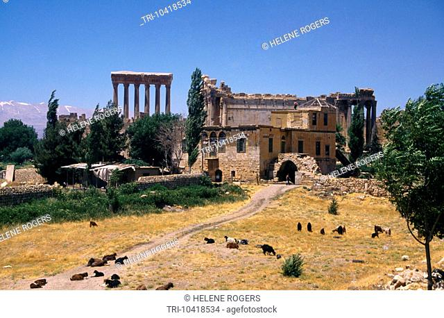 Baalbeck Lebanon Overview Of Temples