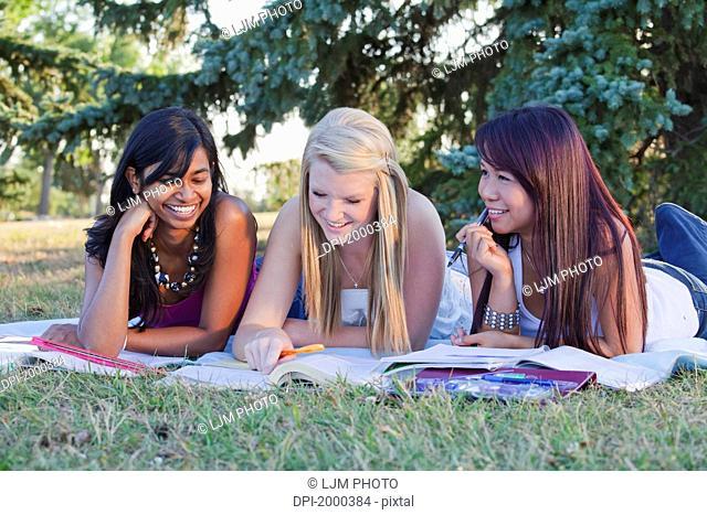 friends doing homework together in a park, edmonton alberta canada