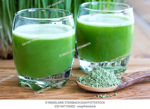 Two shots of fresh barley grass juice, with barley grass powder in the foreground