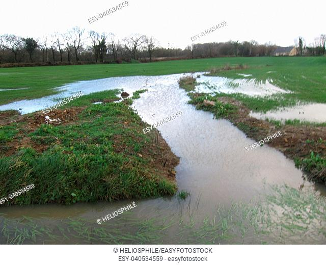 Flooded field at winter in Brittany.
