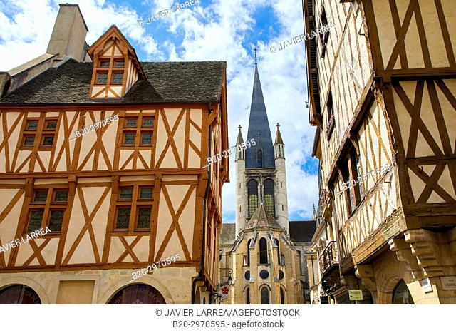 Traditional timber-frame Tudor style buildings, Notre-Dame church, Rue de la Chouette, Dijon, Côte d'Or, Burgundy Region, Bourgogne, France, Europe