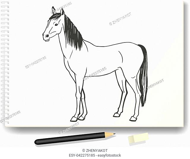 Vector illustration of a horse drawn by hand in pencil on the album A4. The concept of learning to draw animals. Drawing lessons