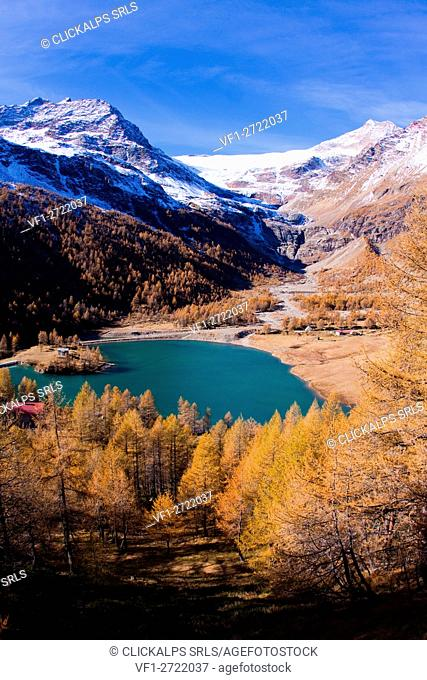 The lake of Alp Grum surrounded by autumn colors, in the background glacier Palù. Poschiavo Valley Canton of Graubünden Switzerland Europe