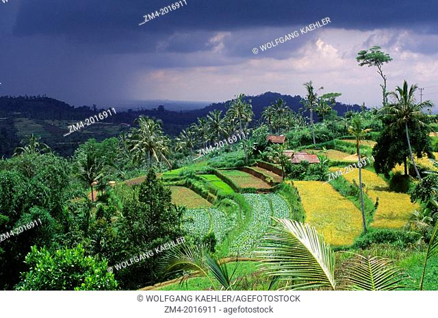 INDONESIA, BALI, NEAR LAKE BRATAN, VEGETABLE FIELDS IN HIGHLANDS, DARK RAIN CLOUDS