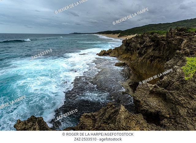 View of Maputaland coastline at Black Rock. iSimangaliso Wetland Park (Greater St Lucia Wetland Park). KwaZulu Natal. South Africa