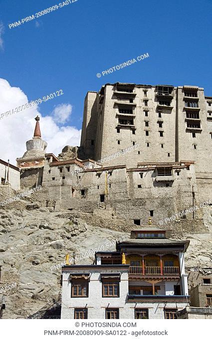 Palace on a hill, Leh Palace, Leh, Ladakh, Jammu and Kashmir, India
