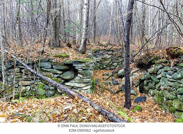 An abandoned cellar hole along the old North and South Road (now Long Pond Road) Road in Benton, New Hampshire USA. Based on an 1860 historical map of Grafton...