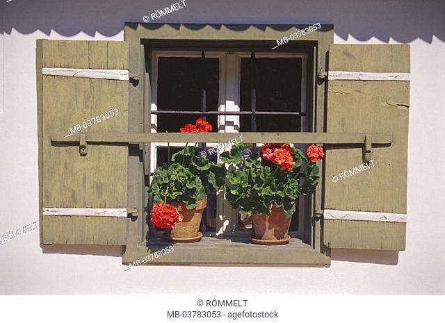 Residence, facade, detail, Windows, geraniums,  House, farmhouse, shutters, windowsill,, Flowerpots, flower jewelry, rural, Germany, Berchtesgaden Alps