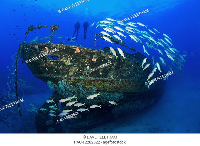 Divers hang above the Carthaginian, a Lahaina landmark, sunk as an artificial reef off Lahaina; Maui, Hawaii, United States of America
