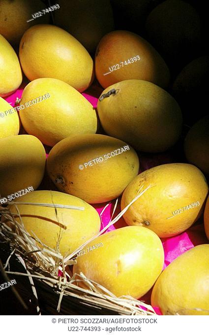 Mumbai India, Alphonso mangoes at the Crawford market