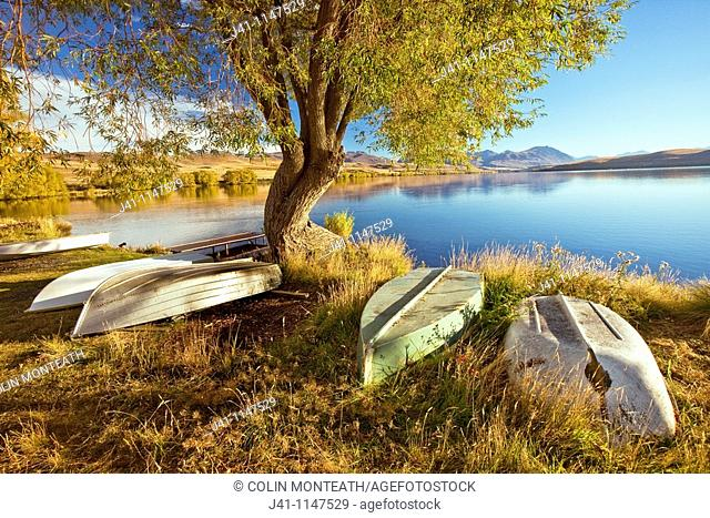 Rowing boats for trout fishermen on foreshore near baches, Lake Alexandrina Wildlife Refuge, autumn, Mackenzie country, Canterbury, New Zealand