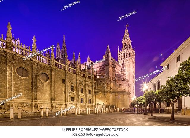 Southeast view of Seville Cathedral at night, Spain