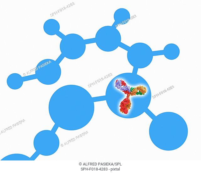 Abstract molecule design, showing a 3d immunoglobulin G antibody human antibody in one of the circular shapes