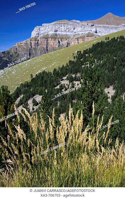 Mondarruego mountains. Ordesa National Park. Spain