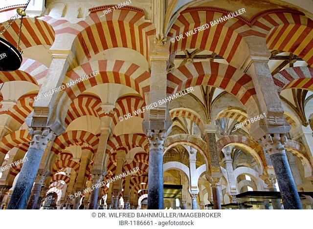 Interior, forest of columns, Mezquita, former mosque, now cathedral, Cordoba, Andalusia, Spain, Europe