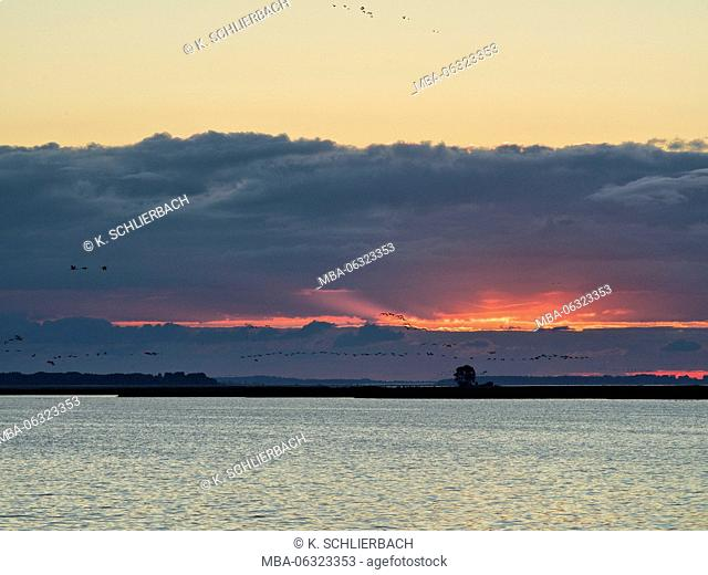 Germany, Mecklenburg-Western Pomerania, Western Pomerania Lagoon Area National Park, morning sky over the Barther Bodden / Barth Lagoon close Zingst