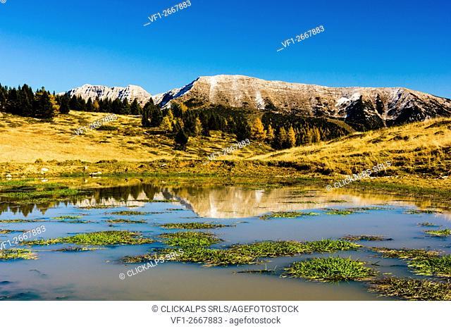 Mountain, Altopiano of Asiago, Province of Vicenza, Veneto, Italy. Mount Portule in autumn
