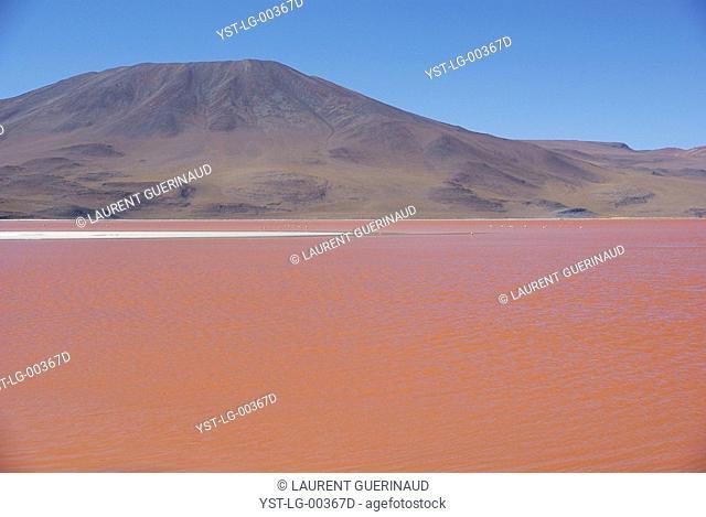 Laguna Colorada, Reserves national of Andean fauna Eduardo Abaroa, Desert of Lipez, Department of Potosi, Sud Lipez Province, La Paz, Bolívia