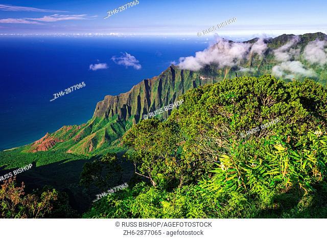 Kalalau Valley and the Na Pali Coast from Kalalau Lookout, Kokee State Park, Kauai, Hawaii USA