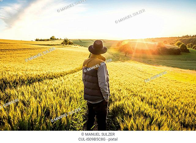 Mid adult man, standing in field, rear view, Neulingen, Baden-W³rttemberg, Germany