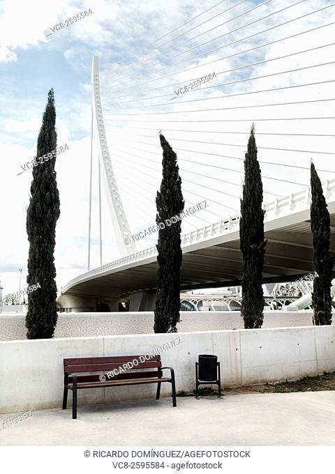 Assut d'Or brigde at the City of Arts and Sciences complex, made by Santiago Calatrava, Valencia, Spain
