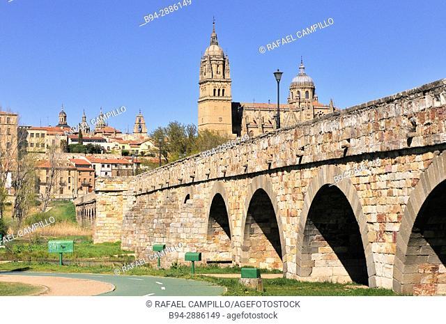 Roman bridge and old cathedral, Salamanca. Castilla-Leon, Spain