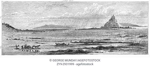 1870: Collecting shellfish near Medieval St Michael's Mount, a small tidal island in Mount's Bay, linked to the town of Marazion by a man-made causeway of...