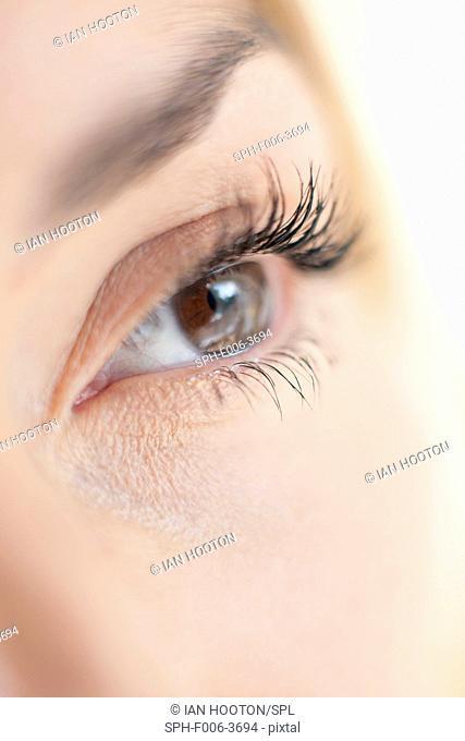MODEL RELEASED. Woman's eye